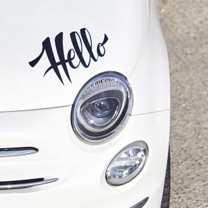 Custom shaped car stickers | Camaloon