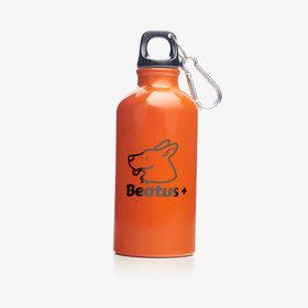 Aluminium flask | 400 ml accessibility.image